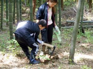 タケノコ掘り27-03